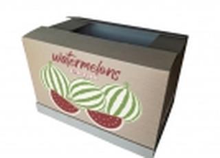 Разработана упаковка для дальней перевозки херсонских арбузов