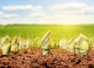 Мнение: Оборот рынка земли в Украине может достичь колоссальной суммы