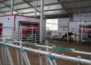 Еридон открыл вторую очередь роботизированной фермы