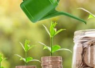 Для збільшення органічних земель на 50% потрібно 5 млрд гривень держпідтримки — експерт