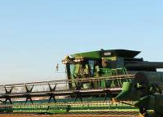 З початку року агровиробництво в Україні зросло на 8,4%